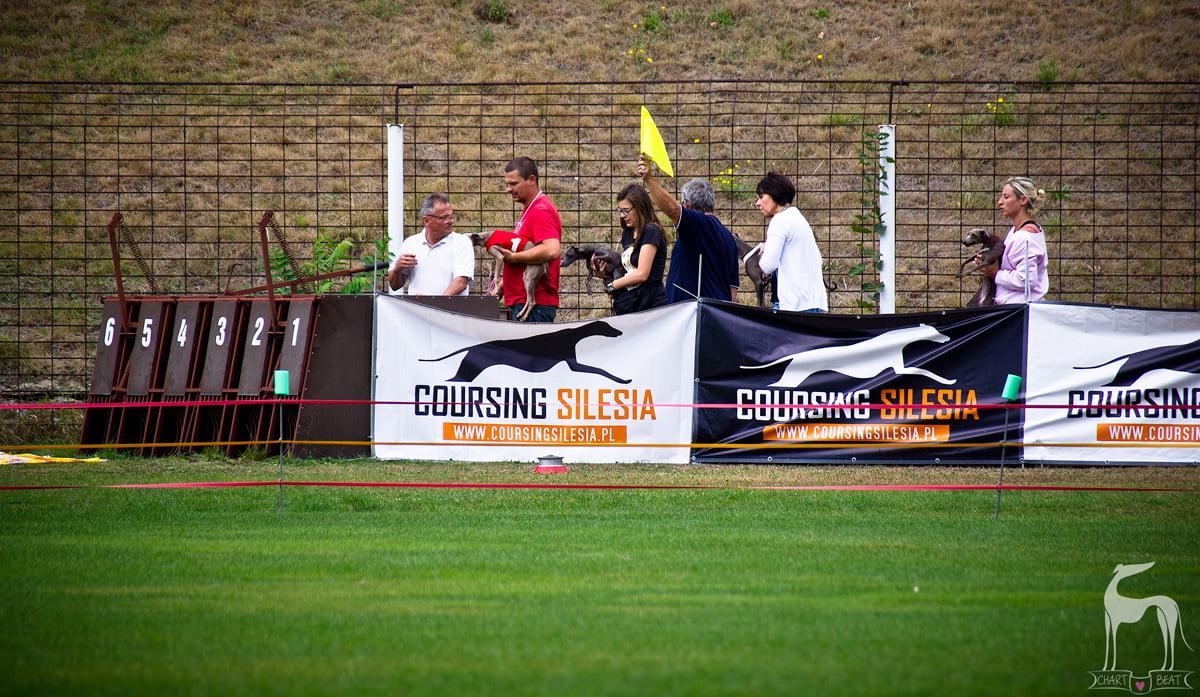 charciki włoskie wyścigi torowe