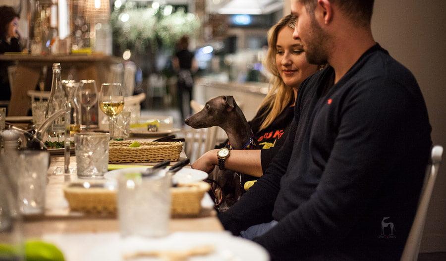 charcik włoski w restauracji